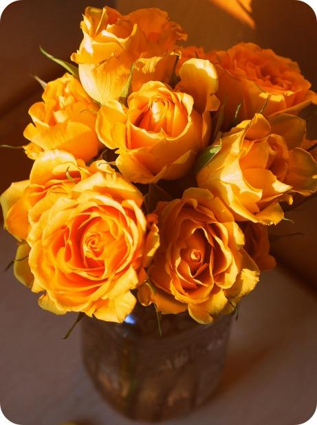 yellow-day-2