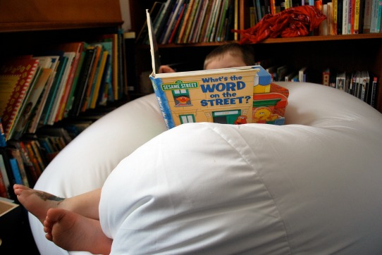 bean-bag-book