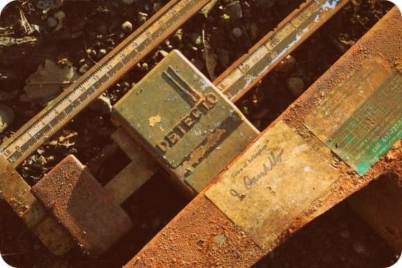 rusty-scale1