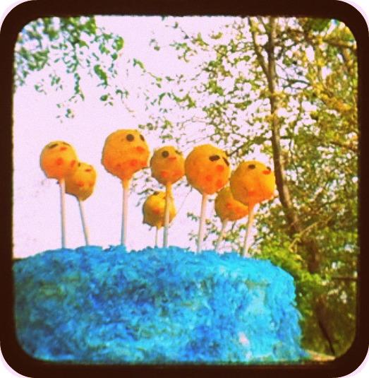 Duckie Cake Pops